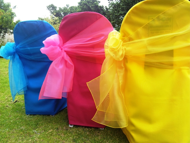 Assorted Organza Bows (1)