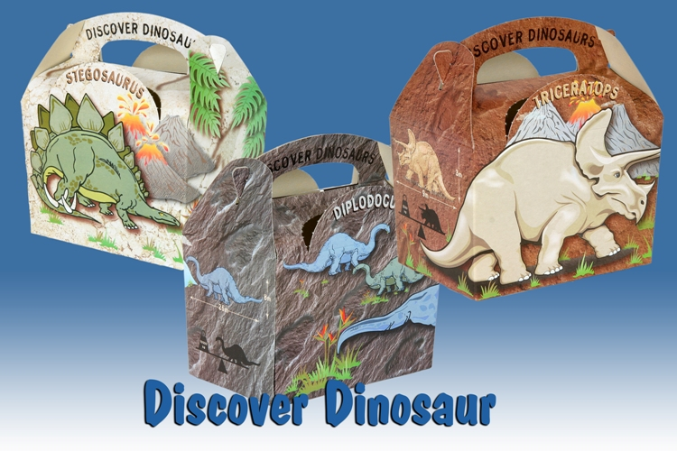 B  Assorted Dinosaur Boxes (1)